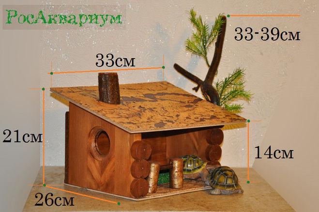Как сделать черепахе домик фото 1