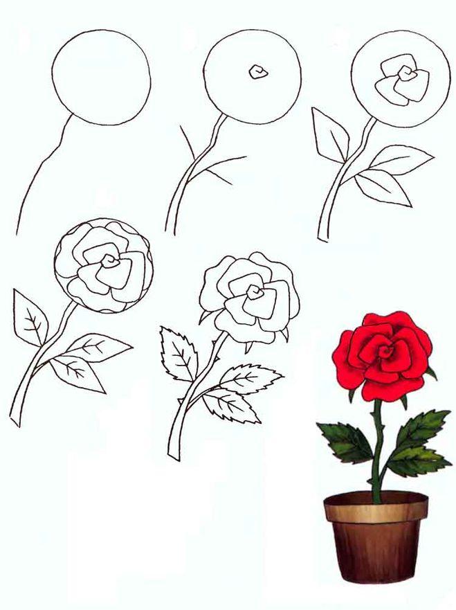 как рисовать розу карандашом: