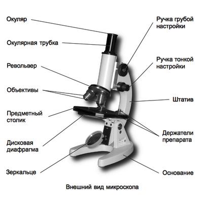 револьвер в микроскопе определение военного снаряжения военной