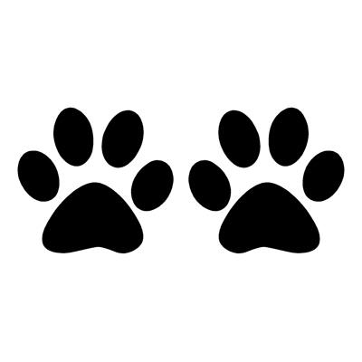 Как нарисовать кошачью лапку