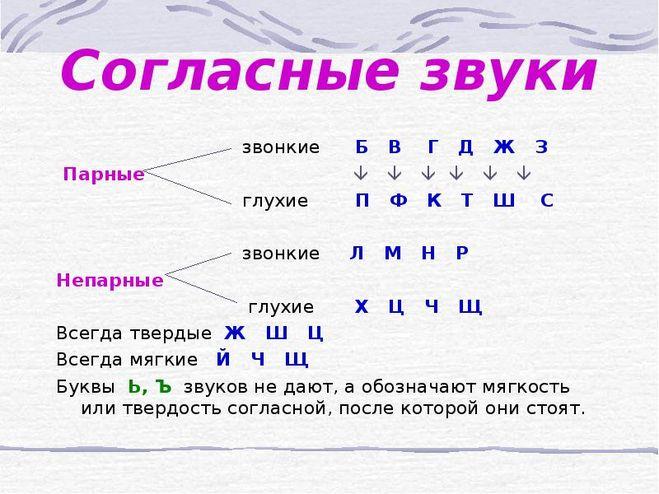 мягким знаком с показателем мягкости согласных звуков