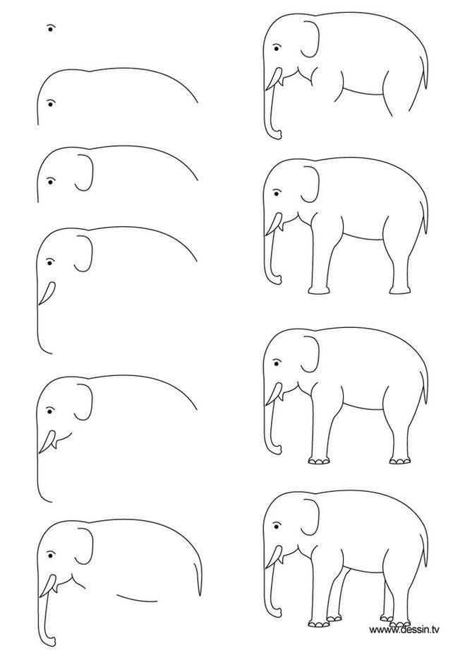 фото слона
