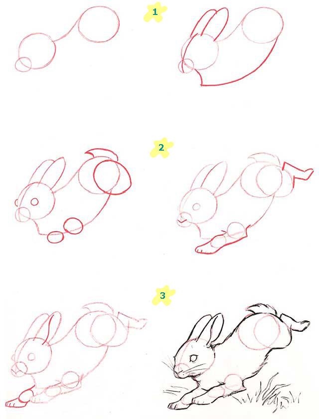 Рисовать кролика поэтапно карандашом
