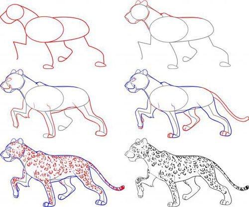Как нарисовать леопарда поэтапна