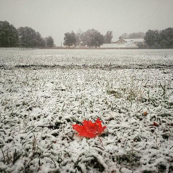 Когда выпадет первый снег в Украине в 2016 году?