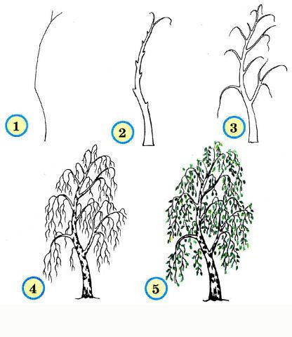 научиться рисовать дерево,