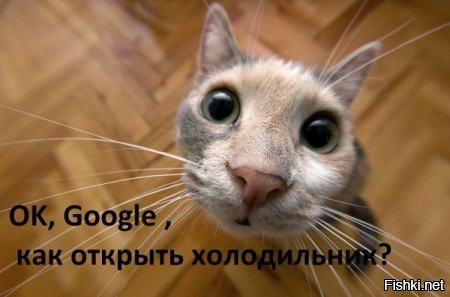 Гугл; Google; Общение в Google