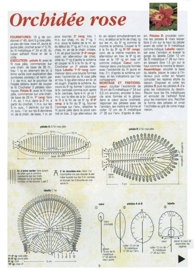 Чем удобрять бамбук в воде