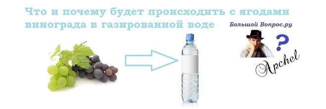 виноград и газировка