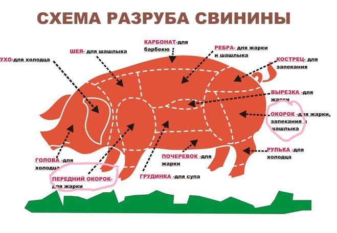 разделки свиной туши,