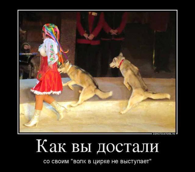 Волки не выступают в цирке