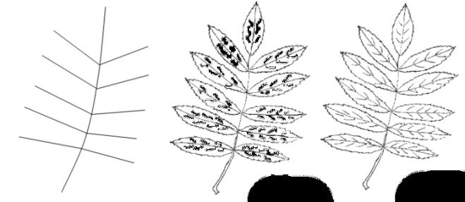 Разукрасить кленовый лист красками