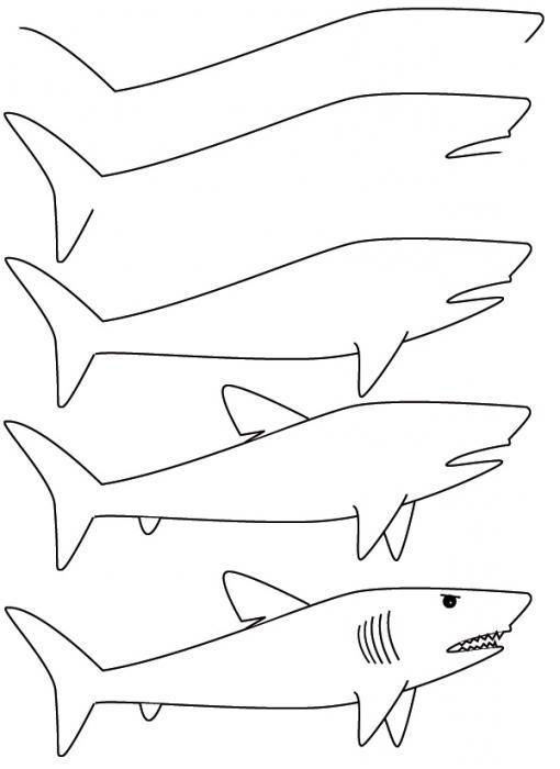 Рисунки с акулами карандашом поэтапно