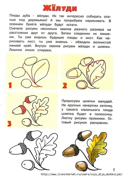 Ягоды рябины рисунок