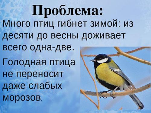 почему нужно кормить птиц зимой детям