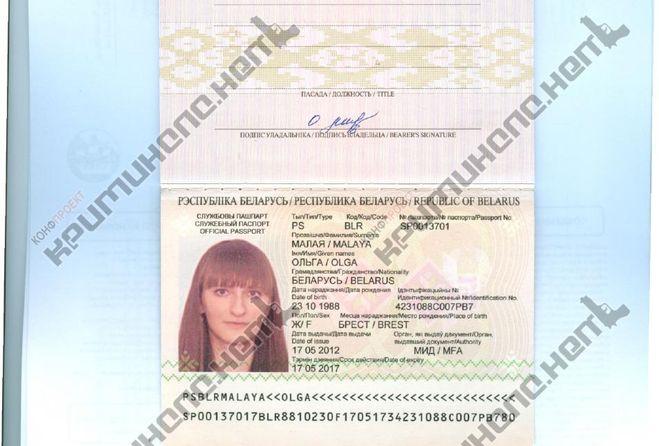 Паспорт где серия где номер