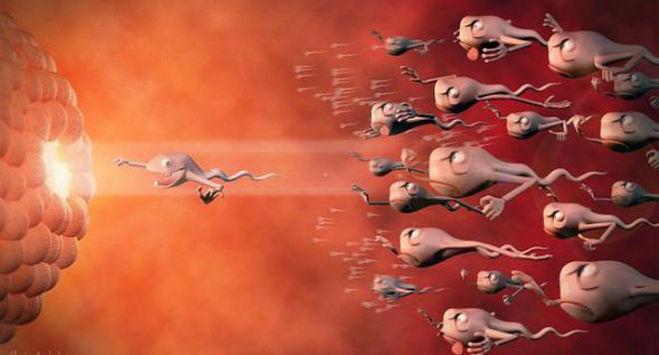 Почему сперма вылетает