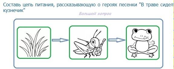 Схема цепи питания для черноморского побережья кавказа фото 591