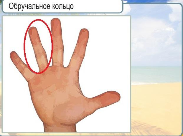 На какой палец одевают обручальное кольцо в россии