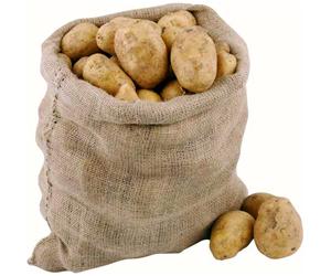 картофель, как вырастить два урожая картофеля