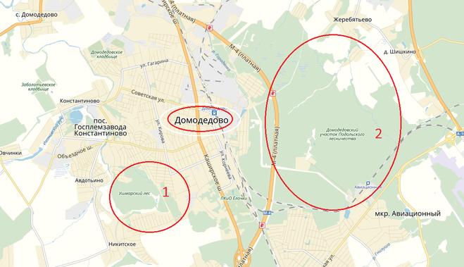 карта грибных мест домодедово