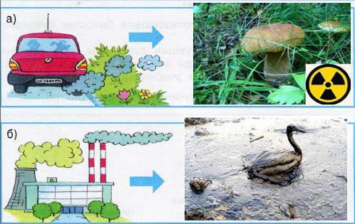 Какие цепи загрязнения могут возникнуть в этих случаях 3 класс рисунки
