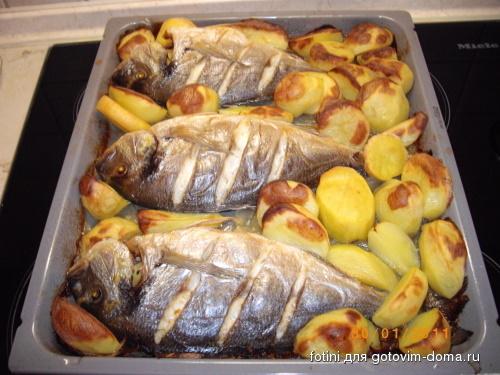 Дорадо в духовке в фольге с картошкой в духовке рецепт