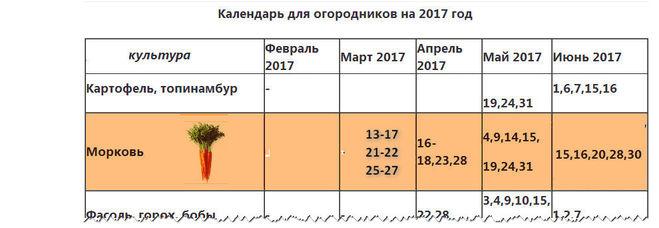 Когда сажать лук под зиму в 2018 году по лунному календарю 74