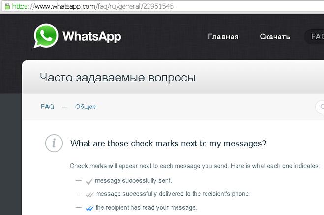 что означает одна галочка в Whatsapp - фото 10