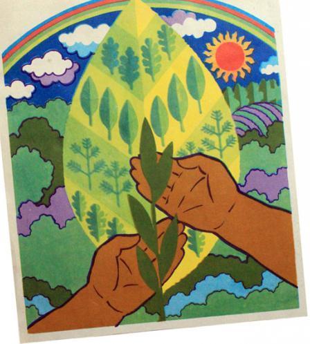 плакат берегите растения. берегите природу