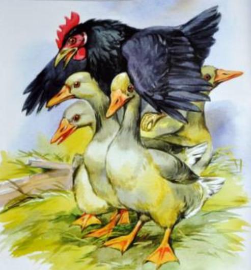 """Какая пословица подходит к рассказу Пришвина """"Курица на столбах"""""""