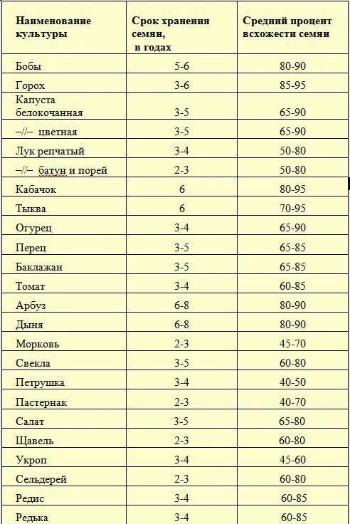 срок годности семян петрушки на всхожесть