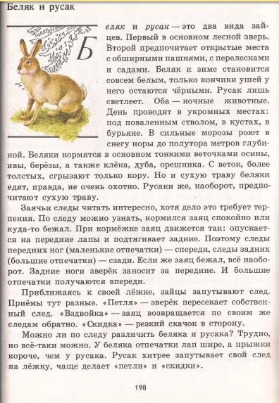 беляк и русак читать
