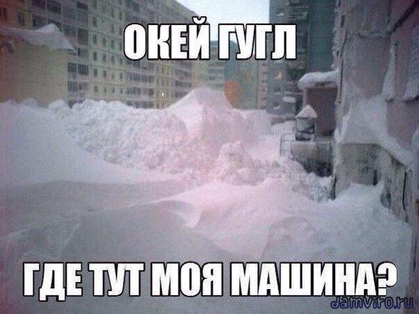 Автомобиль; Дмитрий Медведев; Медведев; статистика; машина; семья