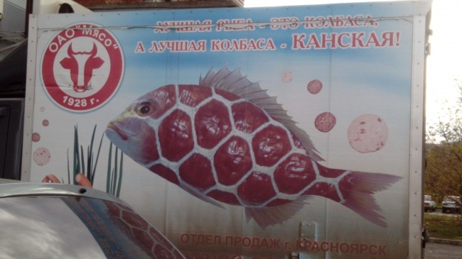 """Лучшая рыба"""