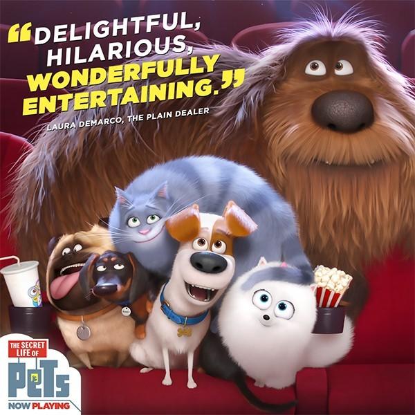 Dog Leash Movie Watch Online