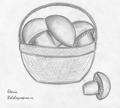 карандашом рисунок корзинка с грибами