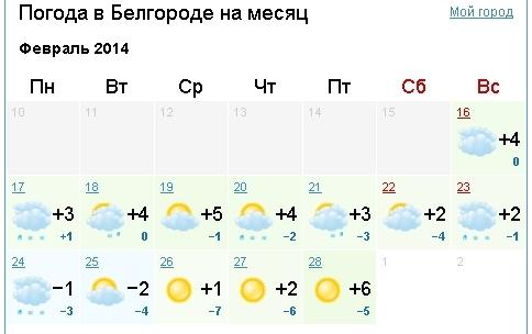 погода белгород на 7 дней