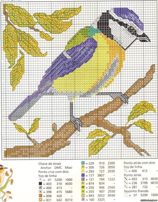 Схема вышивки крестом синицы