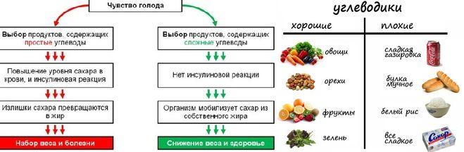 Основной обмен веществ Калькулятор калорий для