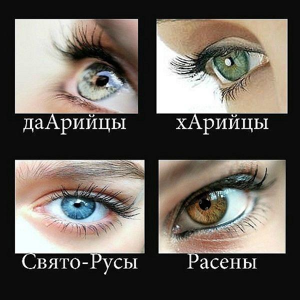 какие глаза называют блядскими-ьщ2