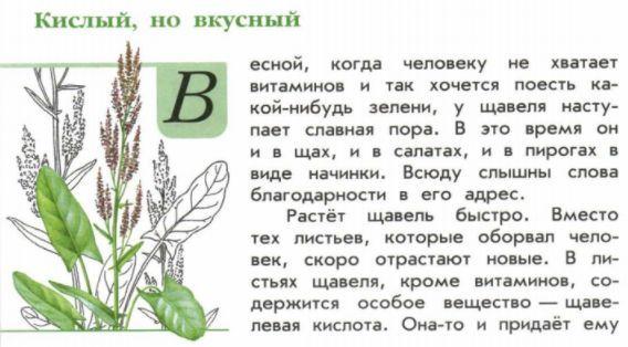 книга зелёные страницы рассказ кислый но вкусный читать онлайн