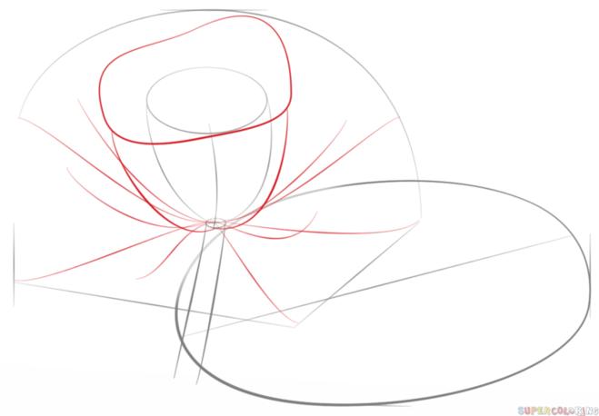 как нарисовать водную лилию 3