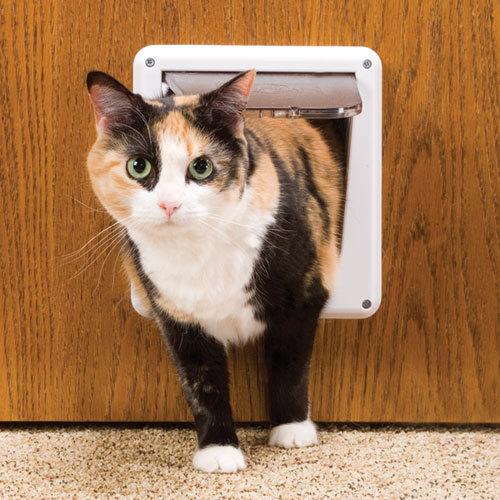 Дверь (лаз) для кошки