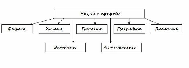 Схема природы 5 класс география фото 400