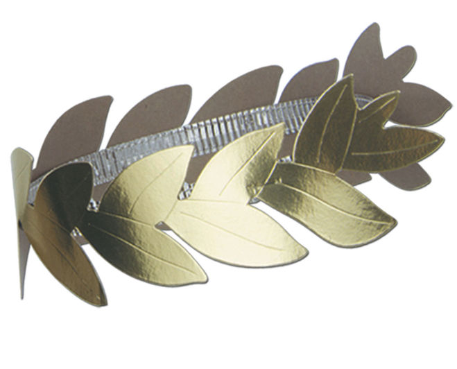 Bay leaf whole tm iva pak