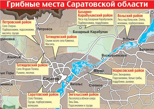 карта грибных мест Саратовской области