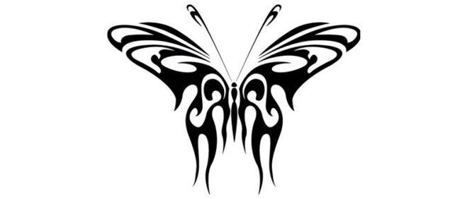 Сначала у бабочки показывают