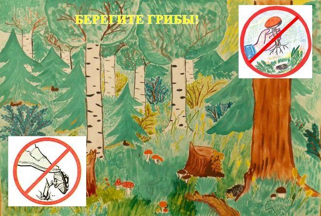 плакат лесу в незнакомом