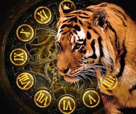 люди родившиеся в год тигра под знаком девы
